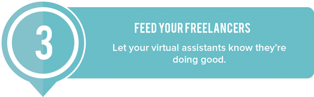 Feed_your_Freelancers