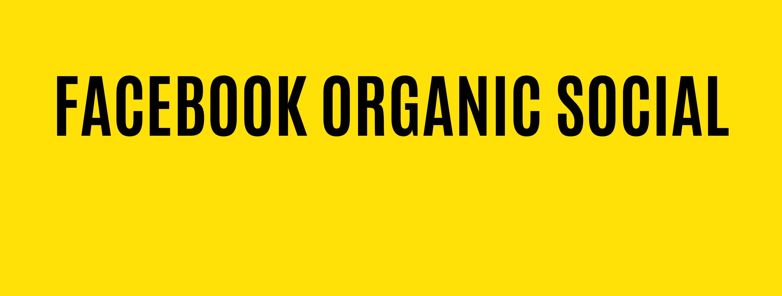 Facebook Organic Social Media Management